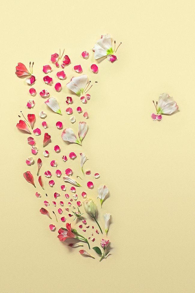 Petals Joy
