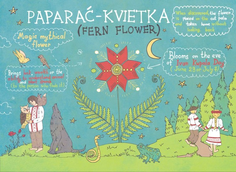 Fern flower.jpg