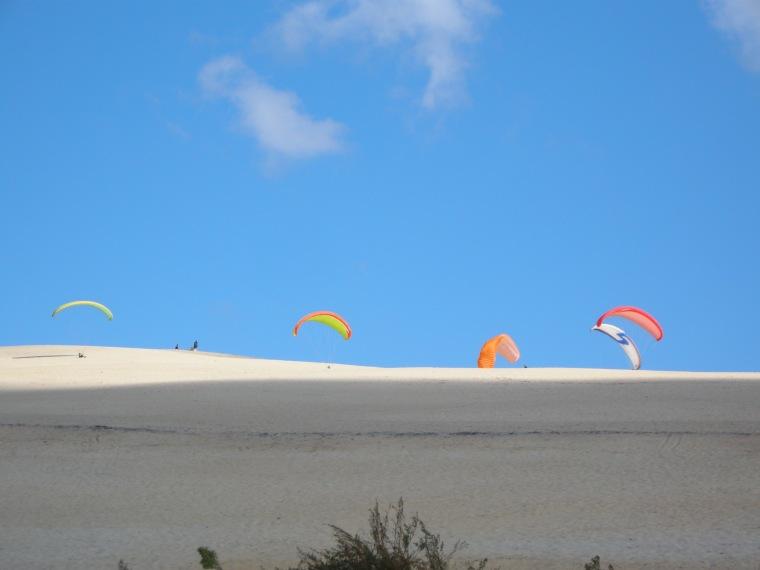 Dancing Kite.jpg